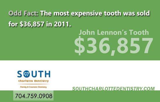 Teeth, Unique Teeth Facts, Dental Facts, Oral Health, Fun Dentistry, Dentist, South Charlotte Dentistry, Charlotte NC
